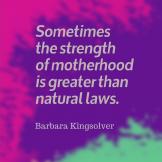 Quote_StrengthOfMotherhood_BarbaraKingsolver