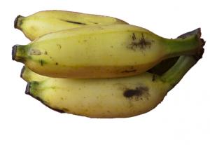 EcoBeauty_banana