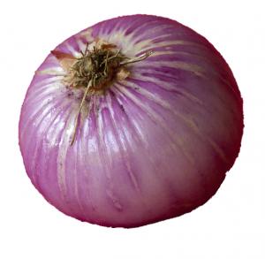 EcoBeauty_onion