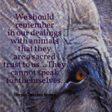 Quote_AnimalsSacredTrust_HarrietBeecherStowe