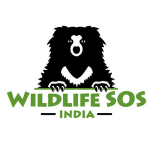 Nonprofit Spotlight:  Wildlife SOS